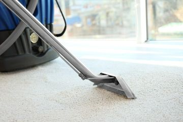 Carpet Steam Cleaning in Horsham by I Clean Carpet And So Much More LLC